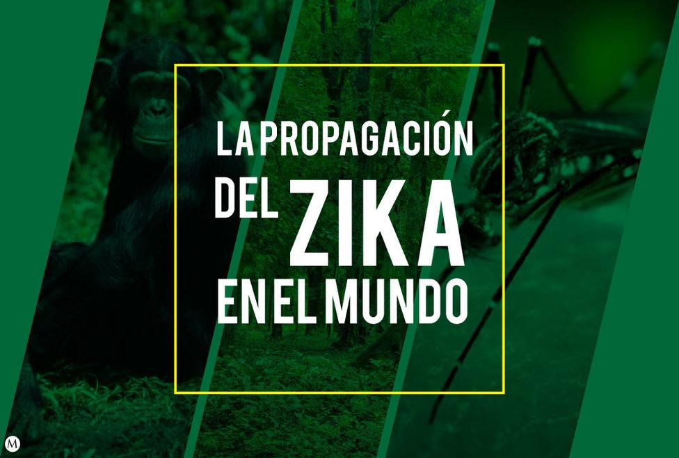 propagacion-Zika-mundo_MILIMA20160127_0076_3